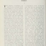 Jewish Surnames: An instructive and suggestive essay on an interesting subject (1904)