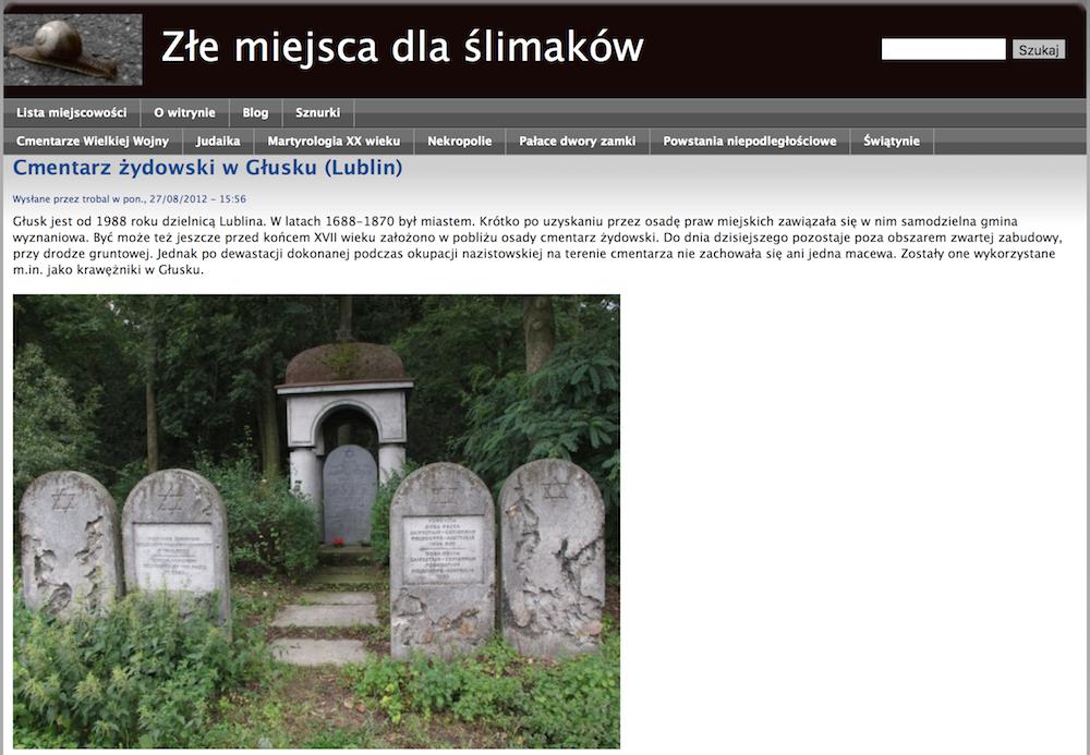 Złe miejsca dla ślimaków page on Lublin cemetery