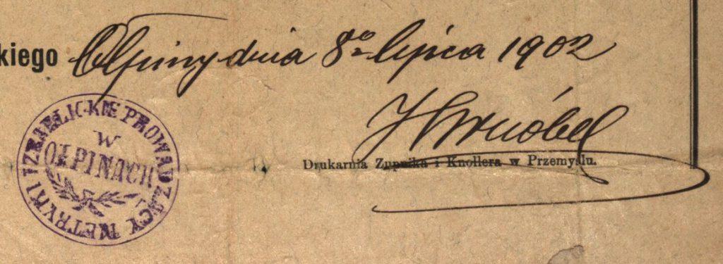 Ołpiny - 1902