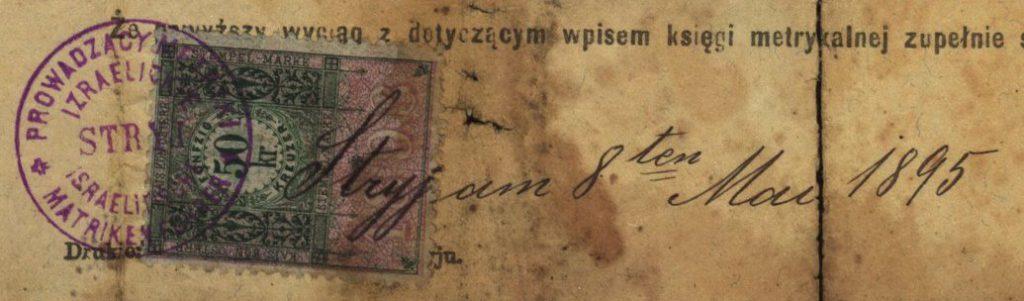 Stryj (now Stryi, Ukraine) - 1895